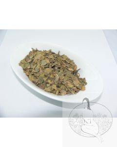 Ginkgo-Blätter, geschnitten