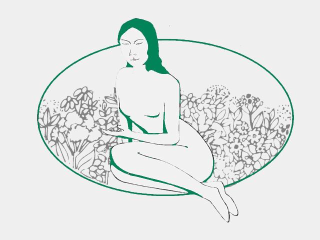 Damiana Blätter, geschnitten